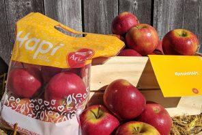 La pomme Ariane nouvellement sur les étalages au Québec
