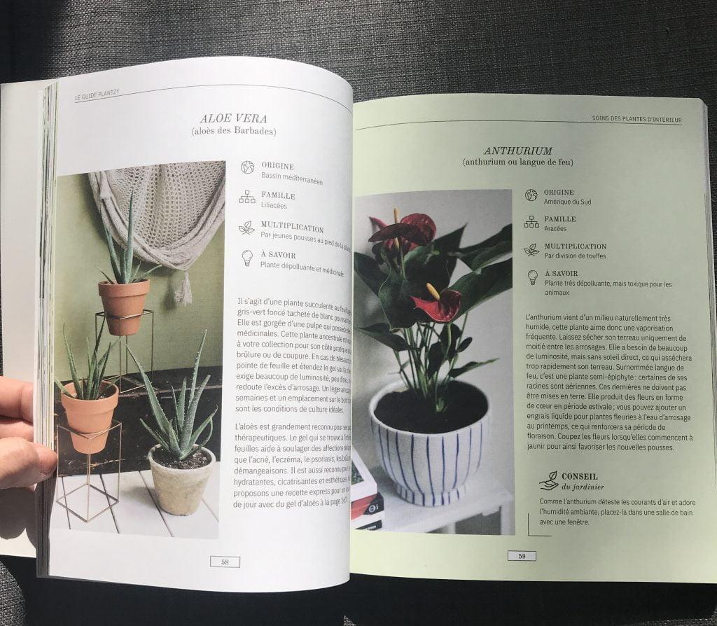 Guide Plantzy