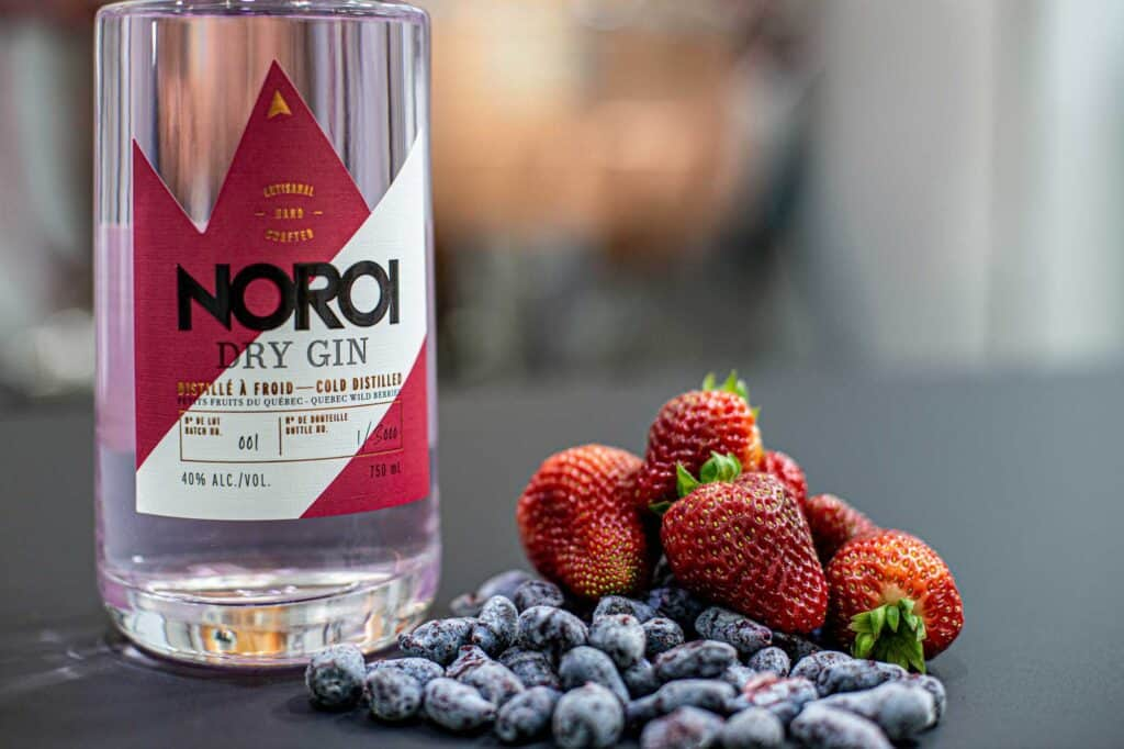 gin Noroi aux petits fruits