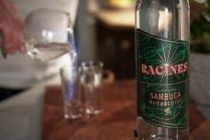 Racines, la première sambuca québécoise par Spiritueux Iberville